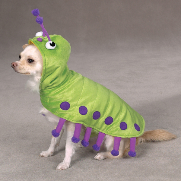caterpillar-dog-costume