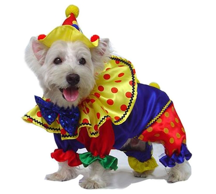 clown-dog-costumes