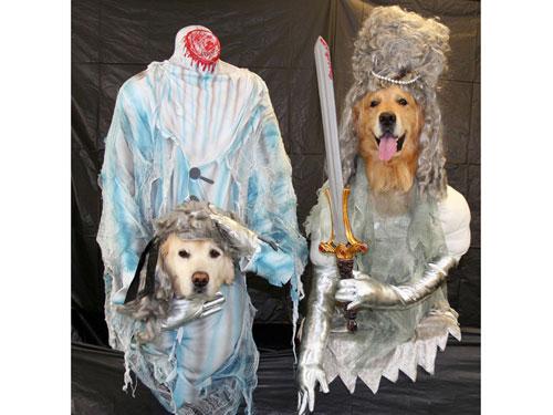 dog-halloween-costumes-3