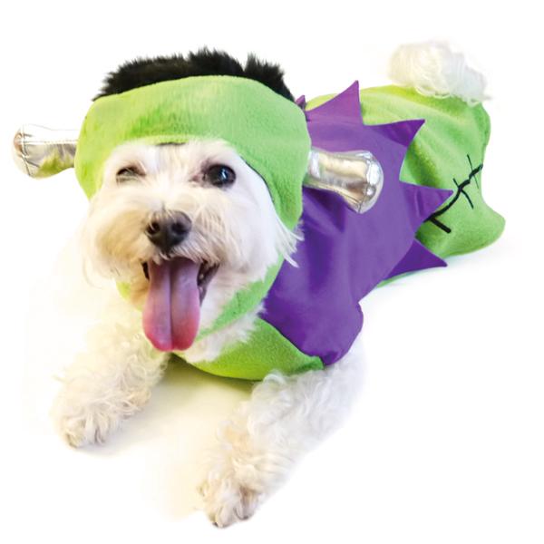 dog-halloween-costumes-6
