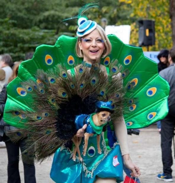 dog-halloween-costumes-8