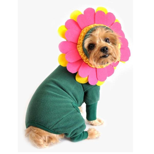 flower-dog-costume