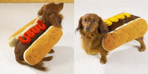 hotdog-dog-costume