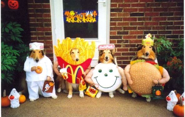mcdonald-dog-costume