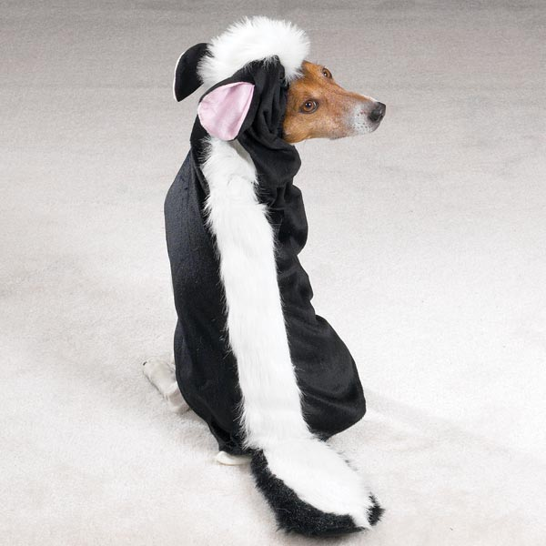 skunk-dog-costume