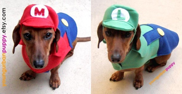 super-mario-dog-costumes