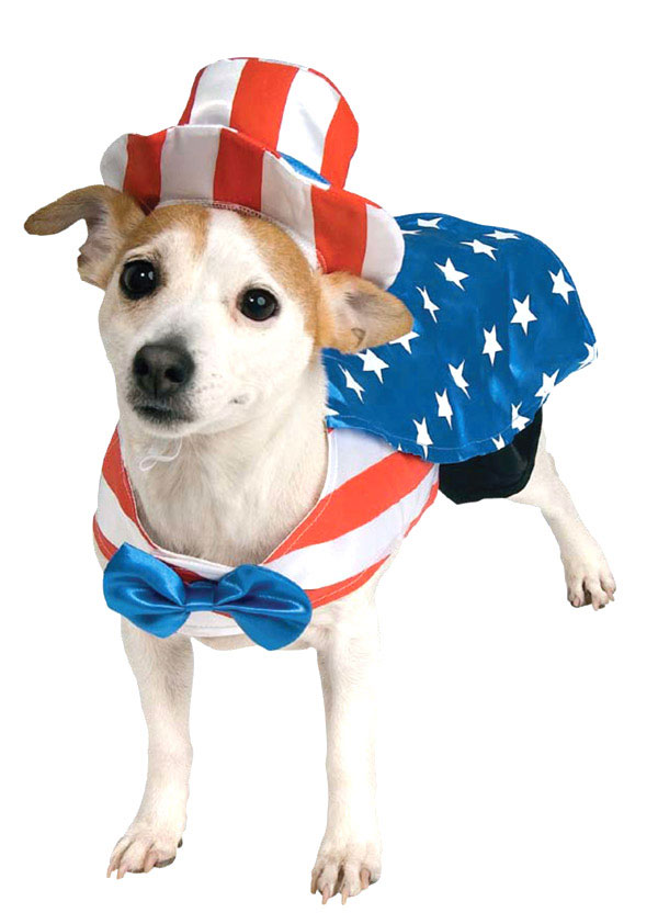 uncle-sam-dog-costume