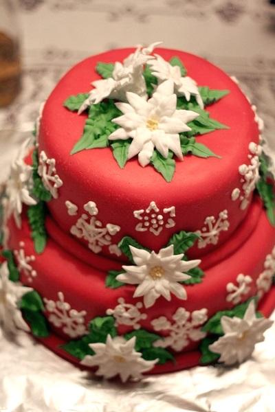 best christmas cake idea