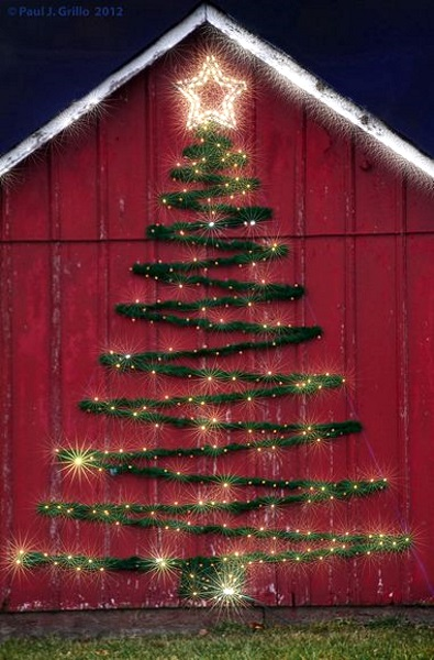 Lovely Outdoor Christmas Tree With Ligts. Image Source