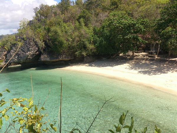 salagdoong-molave-forest-and-beach-resort-siquijor-8