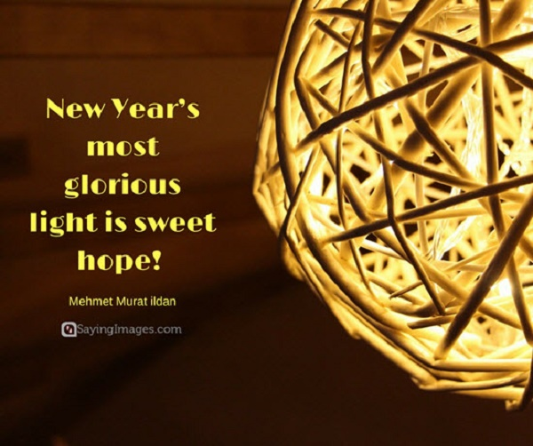 Happy New Year Quotes and Sayings 2017 – Pink Lover